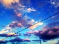 青と白で創り出す世界